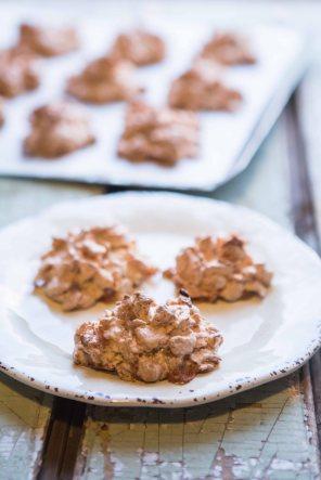 CornflakeCoconutCrunchies-38