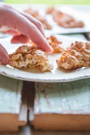 CornflakeCoconutCrunchies-47