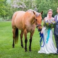 Nicole & James Wedding - 5.19.18